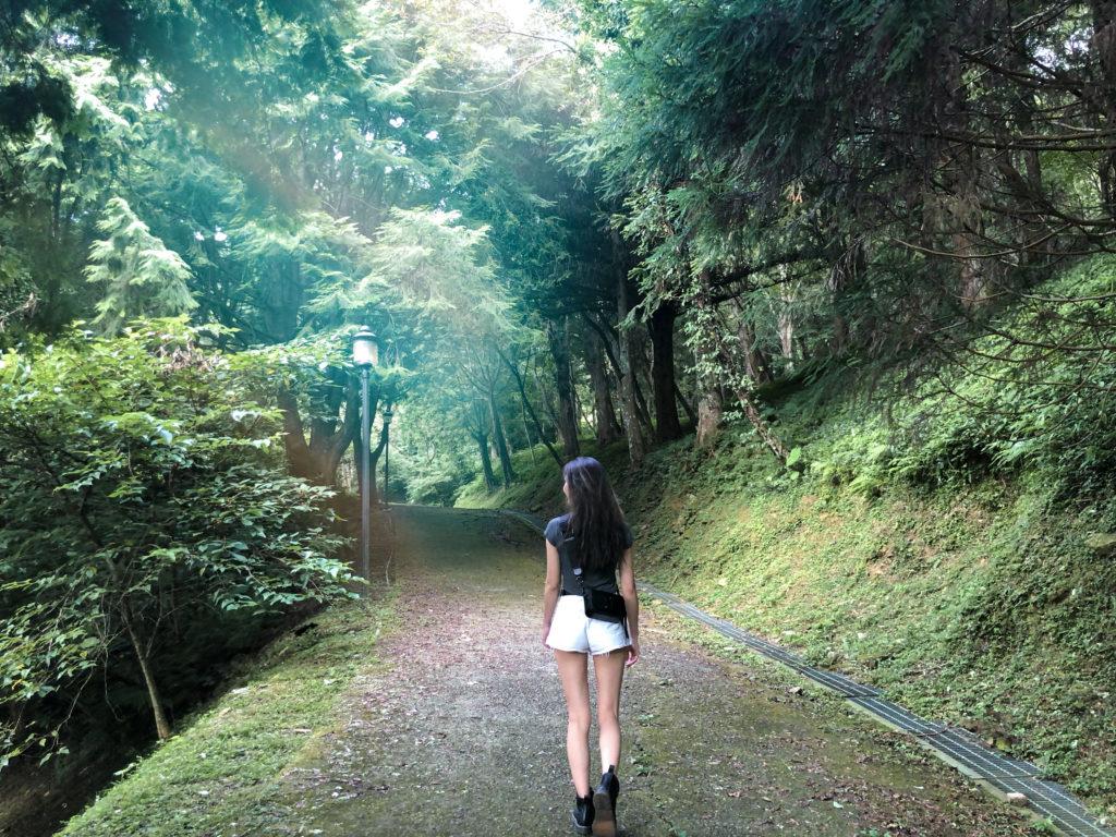 台湾森林浴