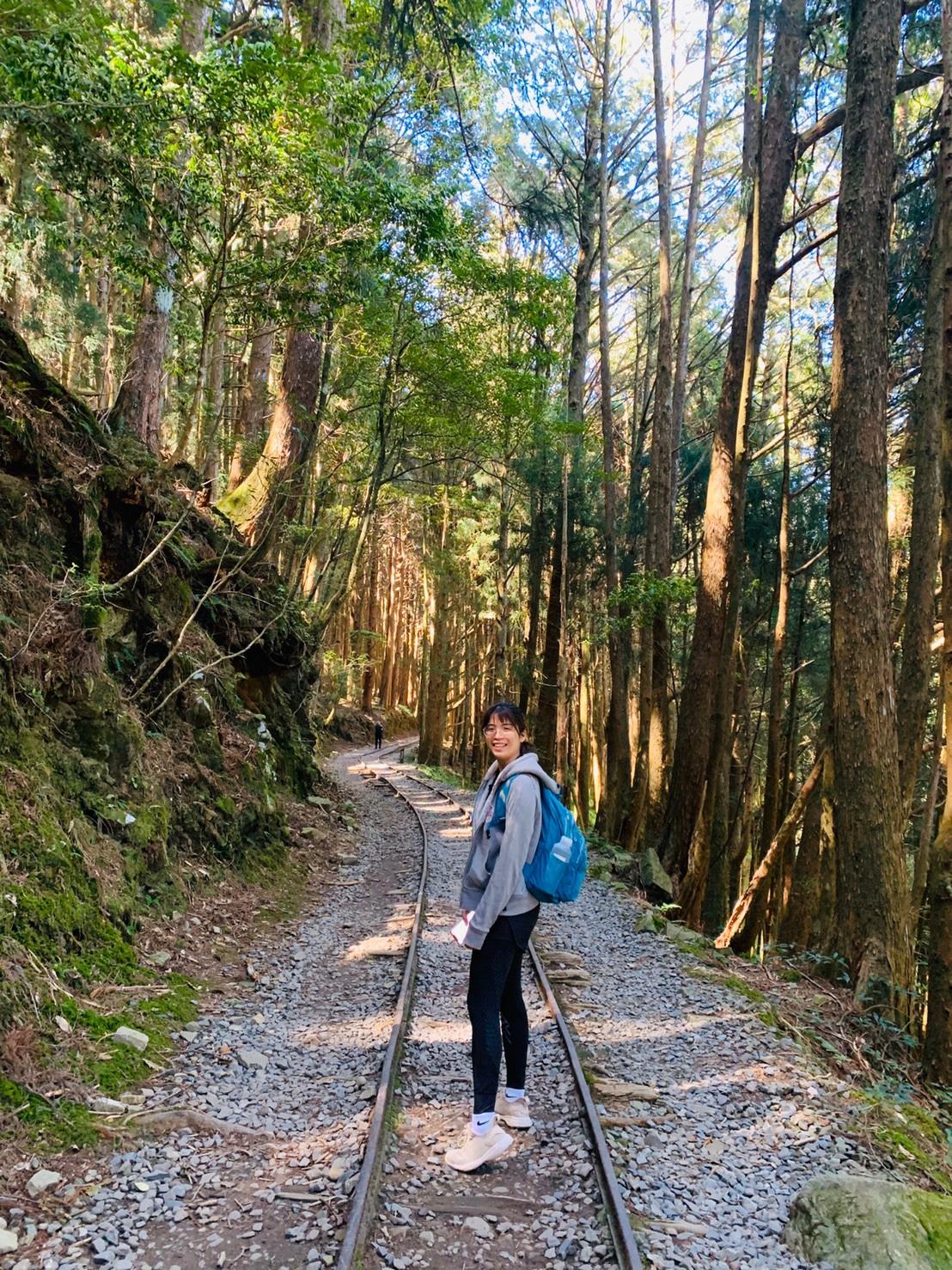 台湾で本気登山特富野古道