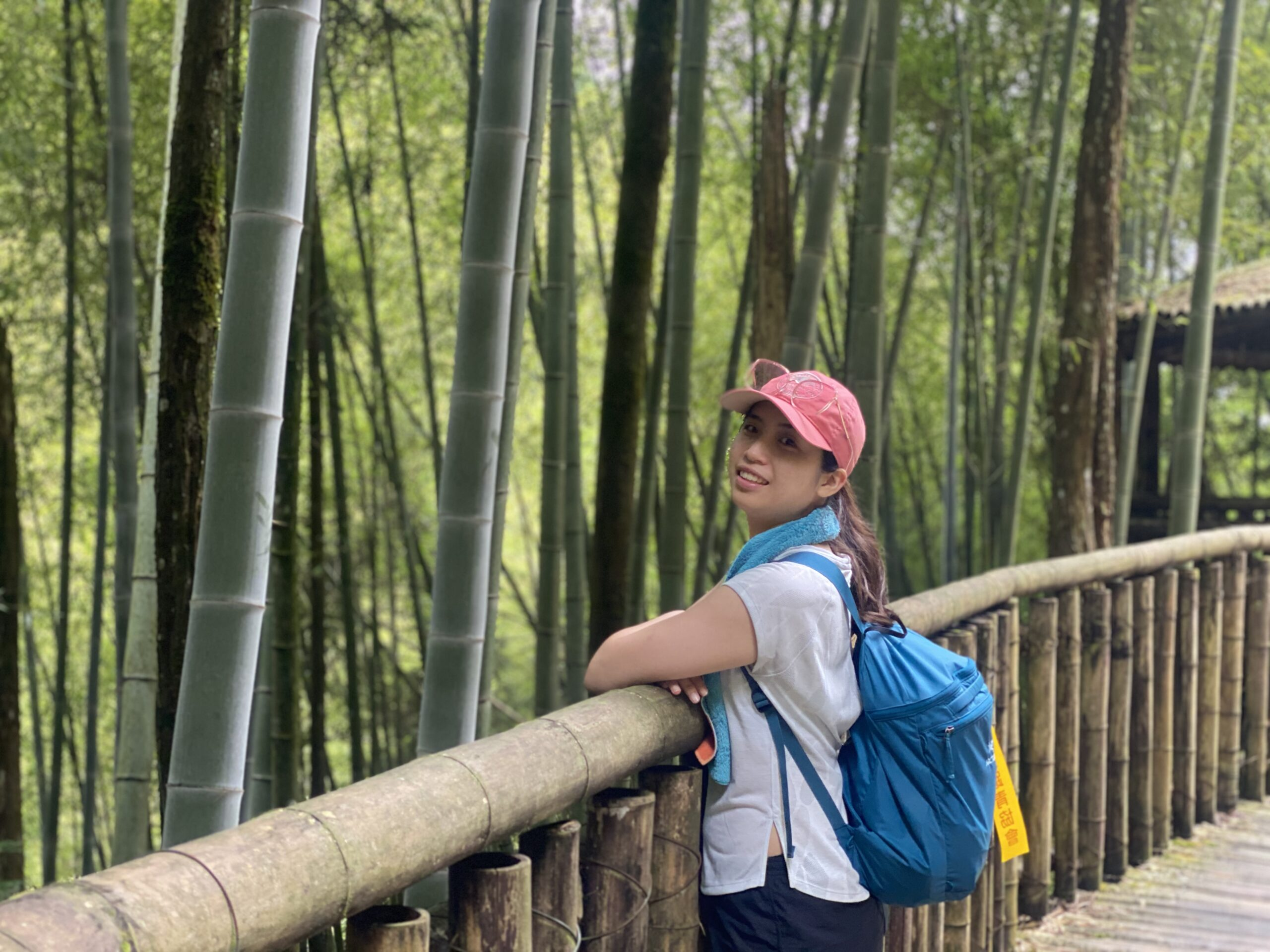 台湾竹林登山